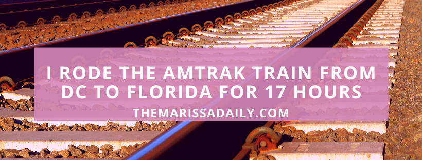 I Rode the Amtrak Auto Train for 17 Hours from D.C. to Florida | Sleeper Car Experience